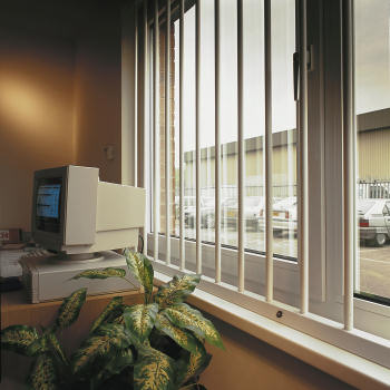 Cetra Removable Steel Window Bars